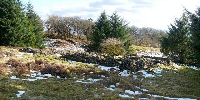 Old sheepfold