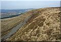 SS8692 : The upper western slopes of Mynydd Pwll-yr-Iwrch (Mynydd Bach) by eswales