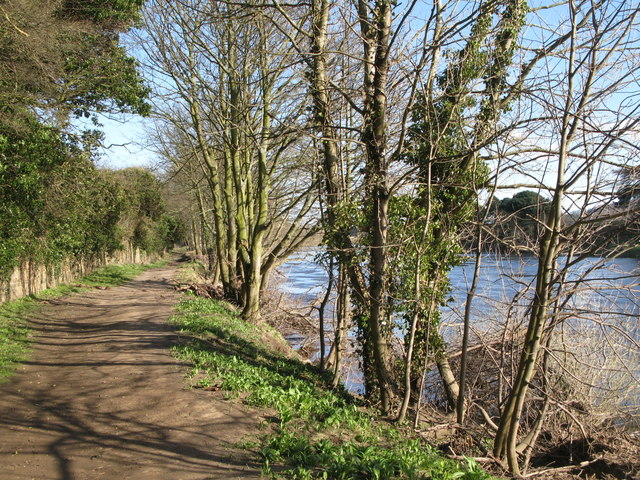 The River Tyne and footpath east of Corbridge Mill