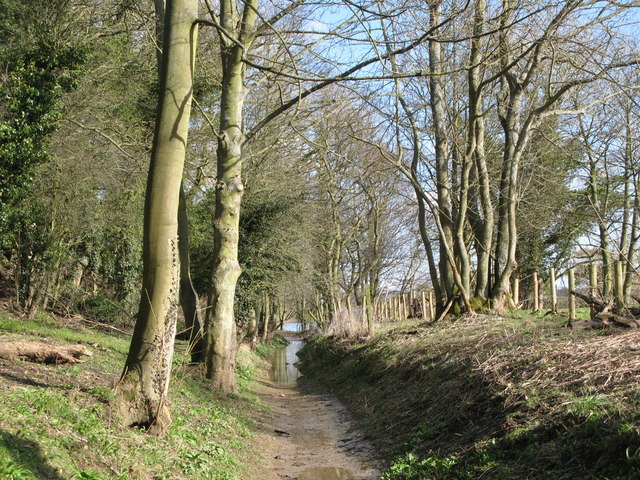 Footpath east of Corbridge Mill
