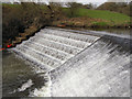 SD7913 : Burrs Country Park, The Weir by David Dixon