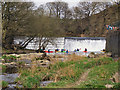 SD7913 : The Weir at Burrs Country Park by David Dixon