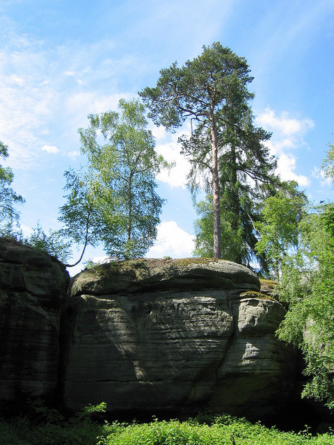 Sandstone outcrop at  Eridge Green