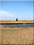 TM4599 : View towards Fritton Marshes drainage mill by Evelyn Simak