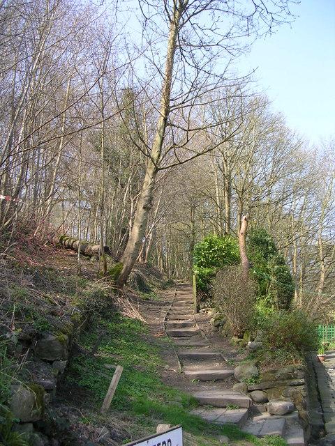 Steps near Ireland Terrace - Harden Road