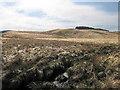 SN7458 : Minor confluence at Blaen Camddwr by Rudi Winter