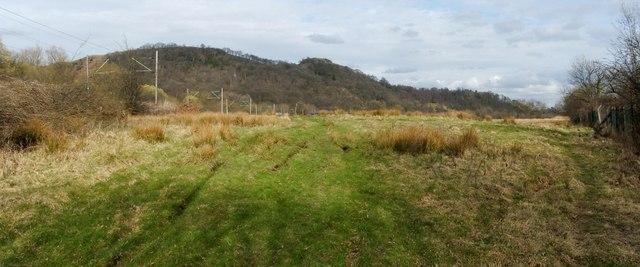 Linear mound near Milton Island