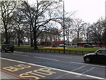 TQ2780 : Flowerbed on Park Lane by Robert Lamb