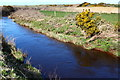 NR6420 : Machrihanish Water by Calum McRoberts