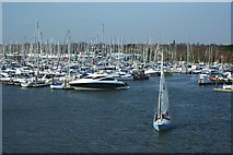 SZ3394 : Marina at Lymington, Hampshire by Peter Trimming