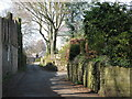 NY9964 : Spoutwell Lane (4) by Mike Quinn