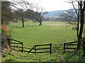 NY9964 : Haugh southeast of Spoutwell Lane by Mike Quinn