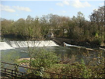 ST1380 : Radyr Weir taken from the train by Ruth Sharville