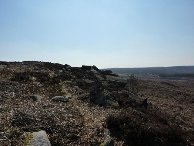 On Harland Edge
