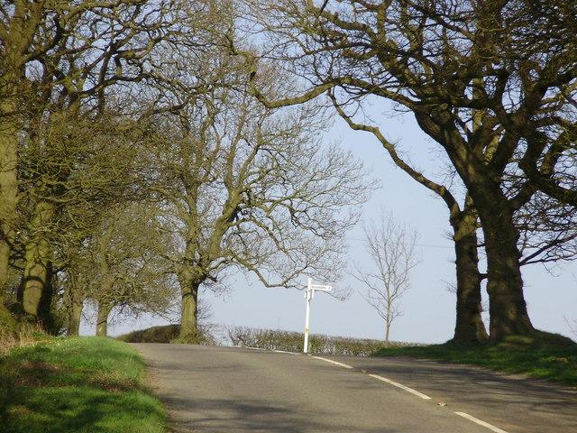 Near Billesdon Coplow