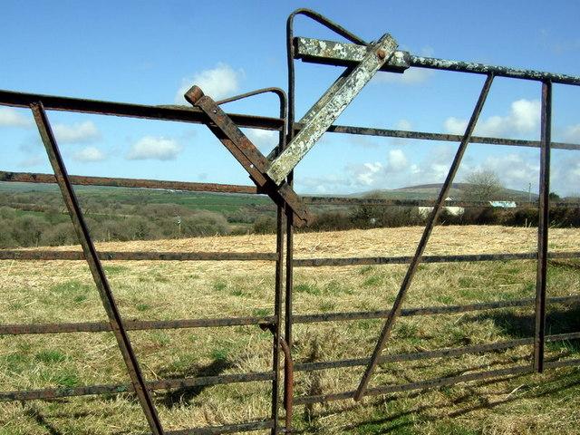 Field and gate near Colston