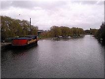TL1998 : River Nene Peterborough by craig putterill
