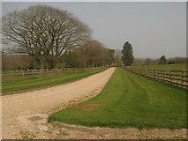 TQ7033 : Driveway to Combwell Priory Farm by David Anstiss