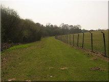 TQ7033 : Footpath from Shearnfold Wood by David Anstiss
