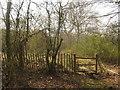 TQ6934 : Stile near the A21 London Road by David Anstiss