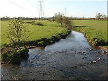 ST0209 : Spratford Stream near Willand by Ruth Sharville