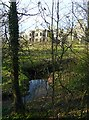 NY4367 : Shell of Kirklinton Hall seen through trees by Rose and Trev Clough