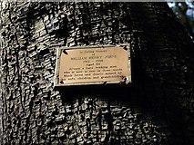 SX9065 : Memorial plaque, Chapel Hill Pleasure Grounds by Derek Harper