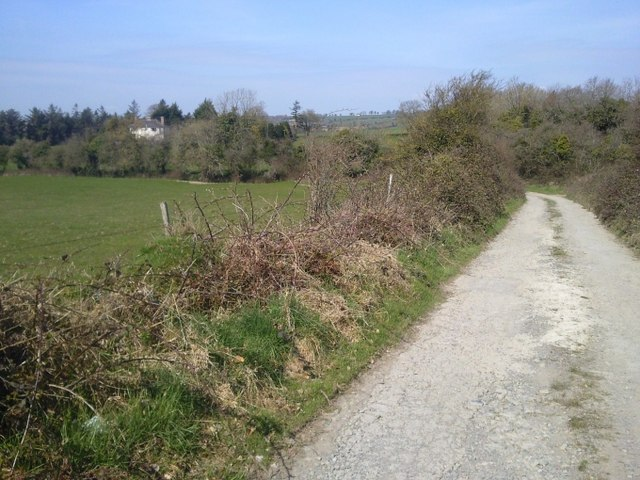 Country Lane, Westown, Co Dublin