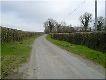 N9743 : Country Road, Cornelstown, Co Meath by C O'Flanagan