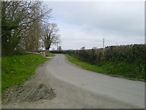 N9742 : Bend in the Road by C O'Flanagan