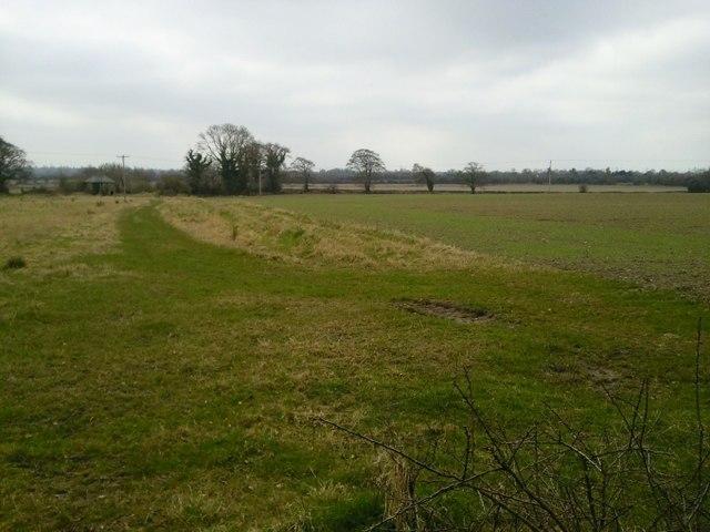 Landscape, Butlerstown, Co Meath