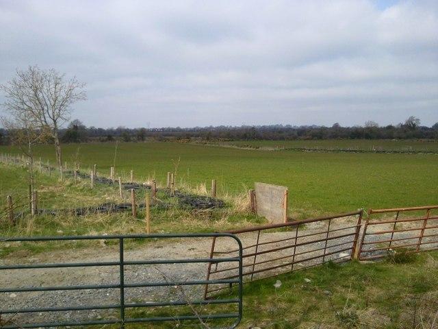 Landscape, Barrockstown, Co Meath
