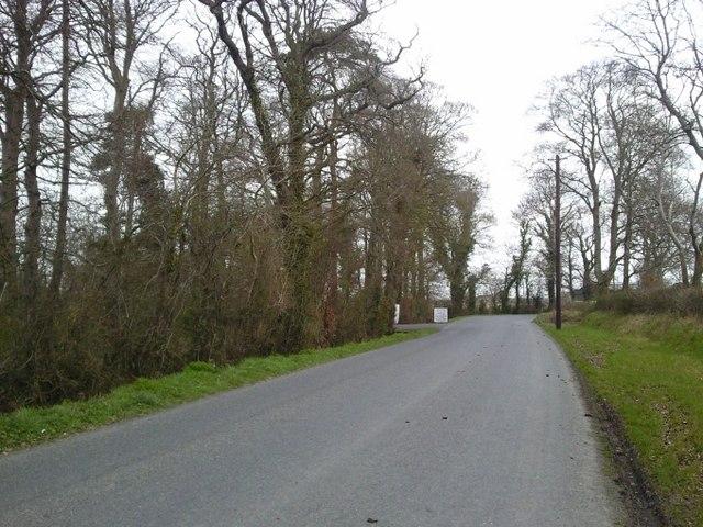 Country Road, Oldgraigue, Co Meath