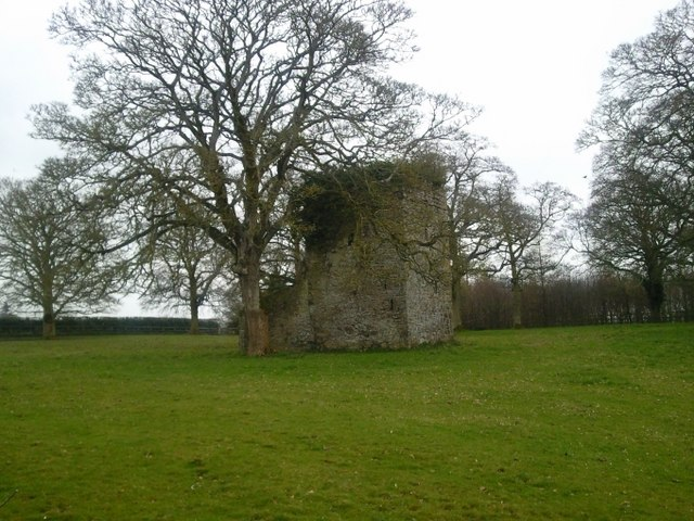 Tower House in ruins, Moygaddy, Co Meath.