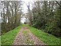 N9645 : Pathway to Ballymaglasson Church, Co Meath by C O'Flanagan