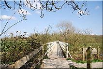TQ5203 : Bridge over the River Cuckmere, Alfriston by N Chadwick