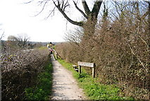 TQ5203 : South Downs Way approaching the River Cuckmere by N Chadwick