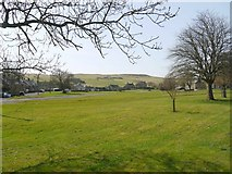 NY9393 : Elsdon village green by Andrew Curtis