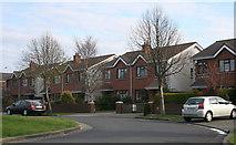 O2325 : Cabinteely, County Dublin (2) by Sarah777