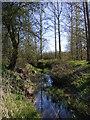 TM3365 : River Alde, Bruisyard by Geographer