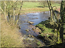 NY6366 : Confluence of the Poltross Burn and the River Irthing by Les Hull