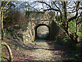 SY9583 : Overbridge on abandoned Fayle's Tramway by Robin Webster