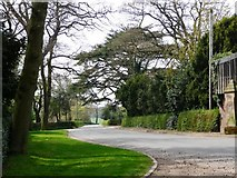 SK1820 : The 'main road' through Dunstall by Christine Johnstone