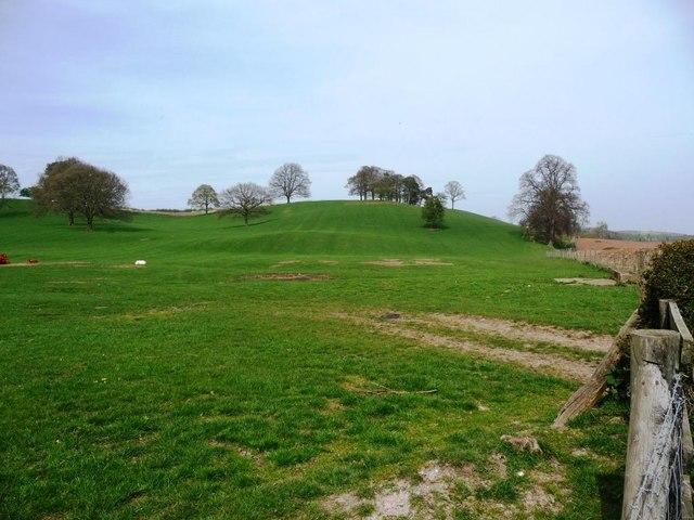 Parkland off Dunstall Road