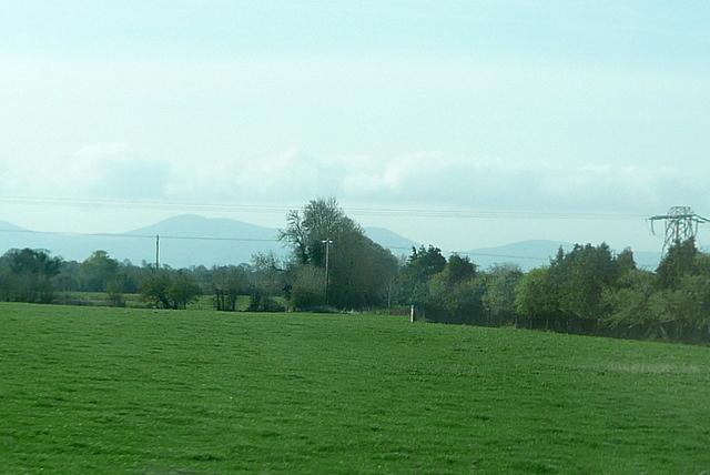 Pasture at Ballyhenebery