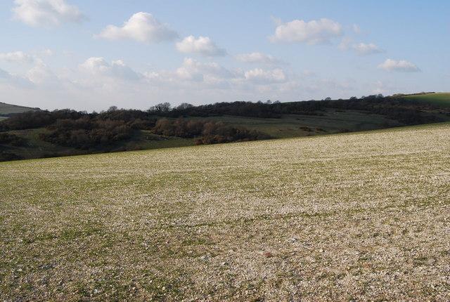 A field of flint