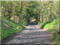 ST6963 : Twelve O'Clock Lane looking North by James Ayres