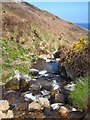SW4740 : The stream above River Cove by Rod Allday