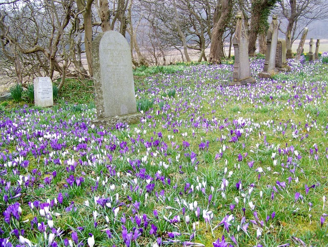 Churchyard, St John's Church