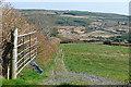R1576 : Pasture at Magherabaun by Graham Horn